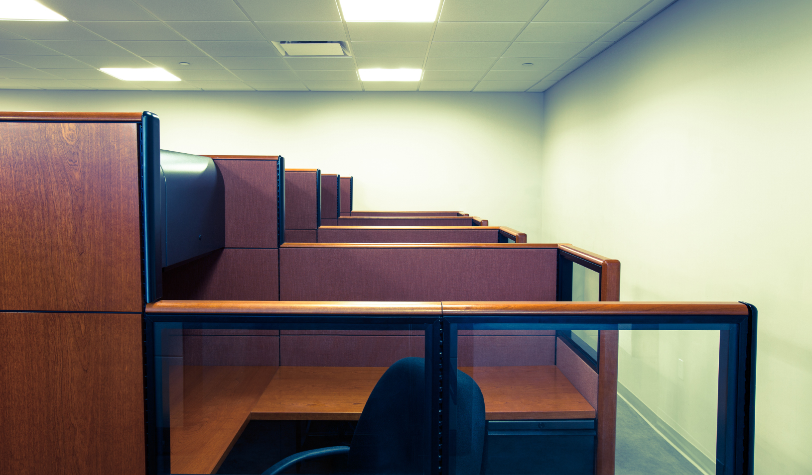 A row of empty office cubicles.  Credit: iStock/ryasick