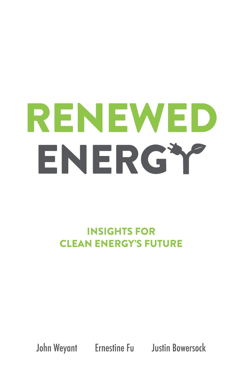Book cover - Renewed Energy: Insights for Clean Energy's Future