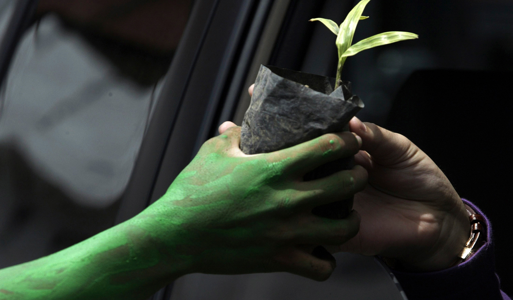 An environmental activist with green paint on his hand gives a plant to a car driver | Reuters/Sigit Pamungkas