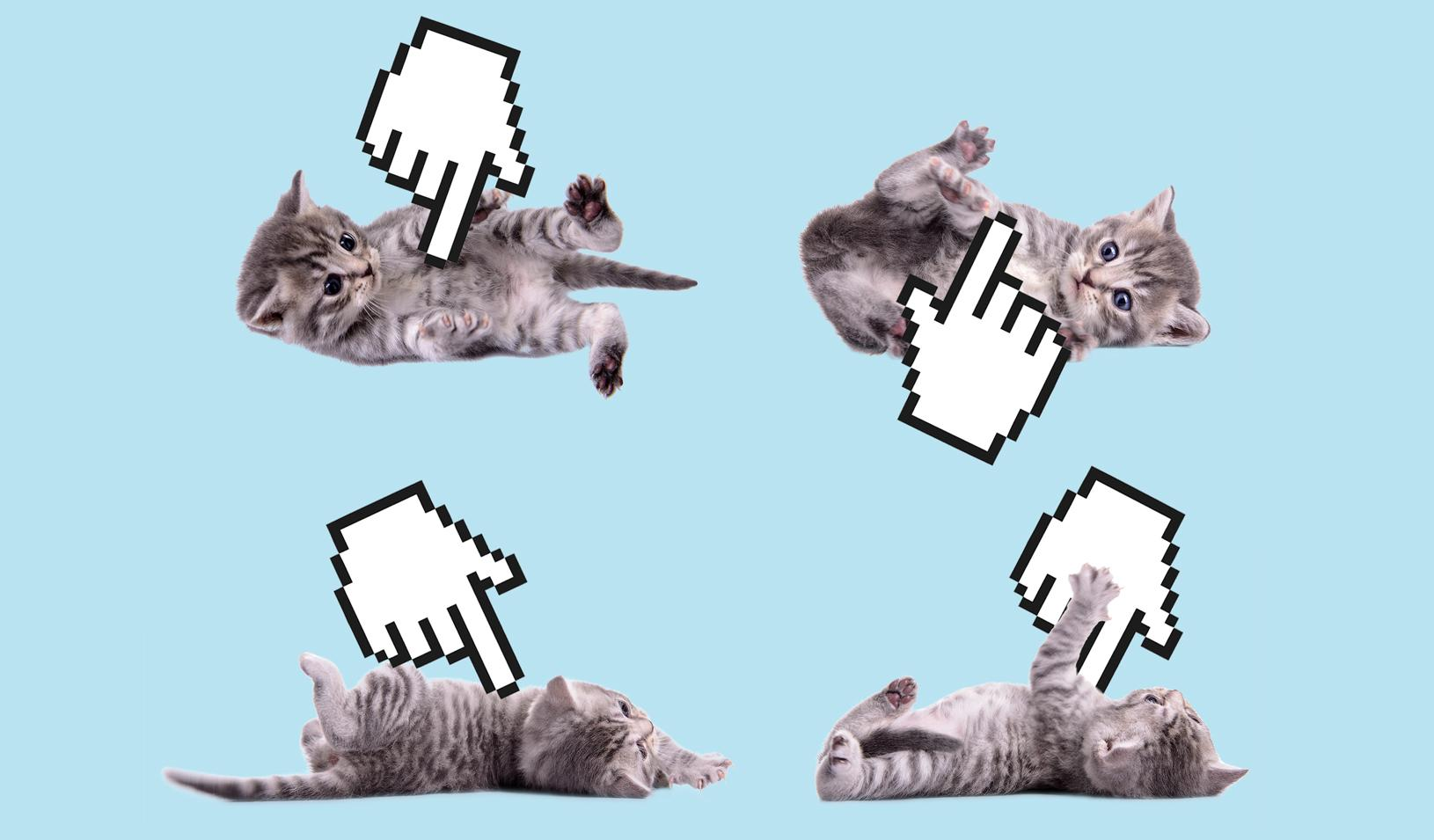 A photo illustration kittens being poked by pixelated hand icons. Credit: Alvaro Dominguez