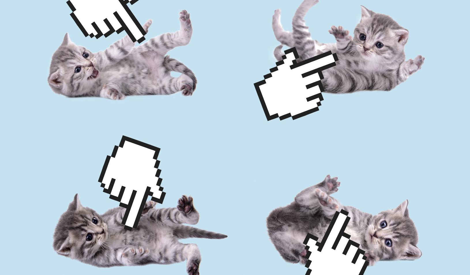 Illustration of four kittens playing on their backs with computer cursors about to click their bellies. Credit: Alvaro Dominguez