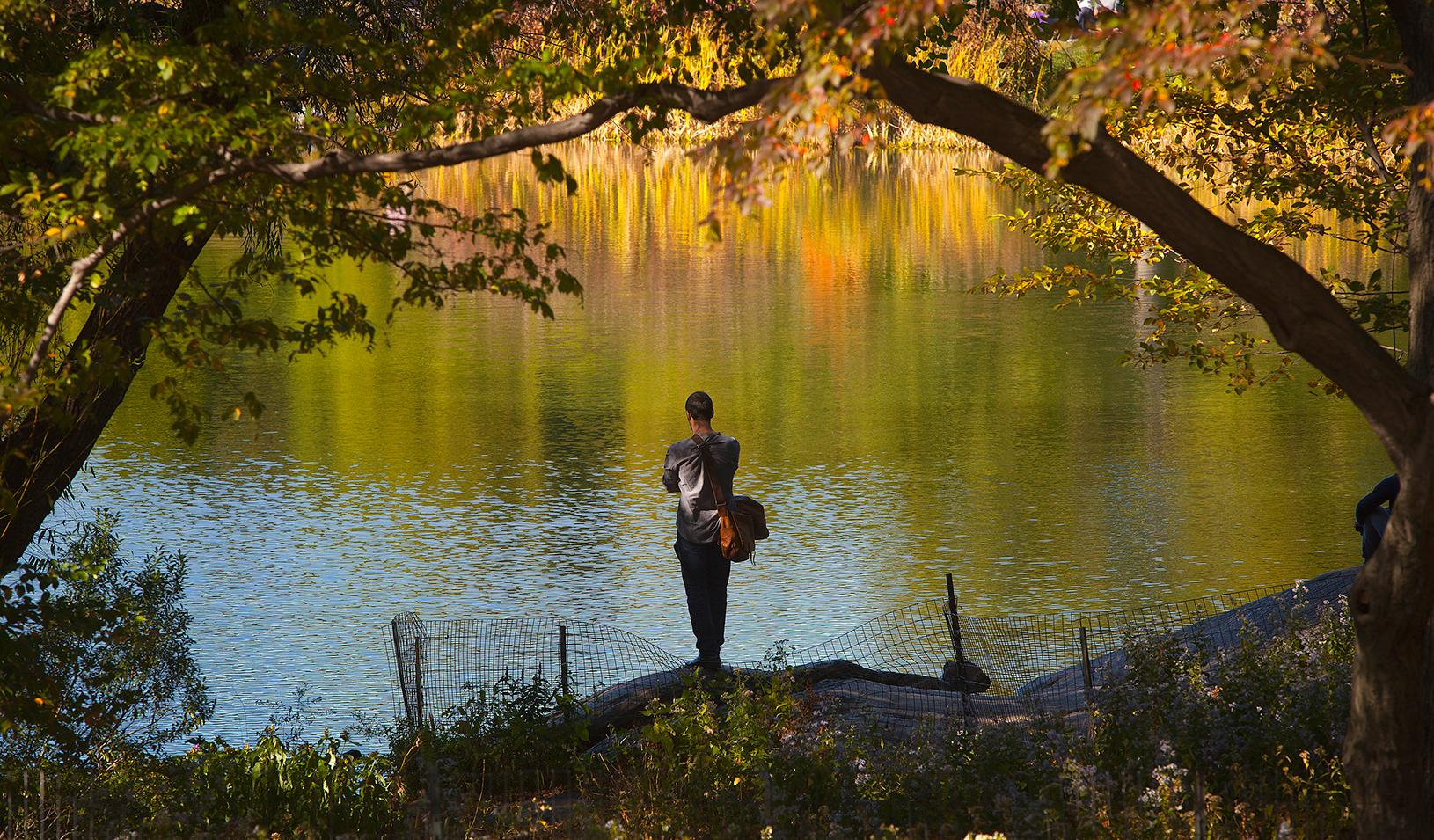 A man standing at the edge of a pond, looking at it