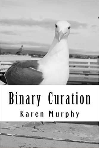 Book cover - Binary Curation