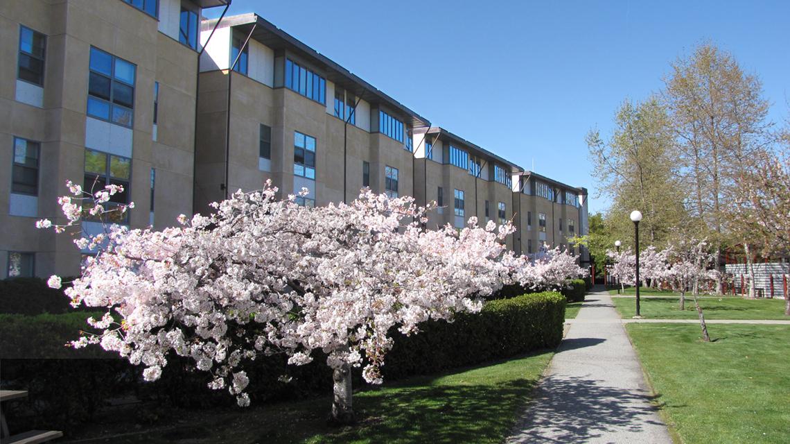 Lyman Graduate Residences
