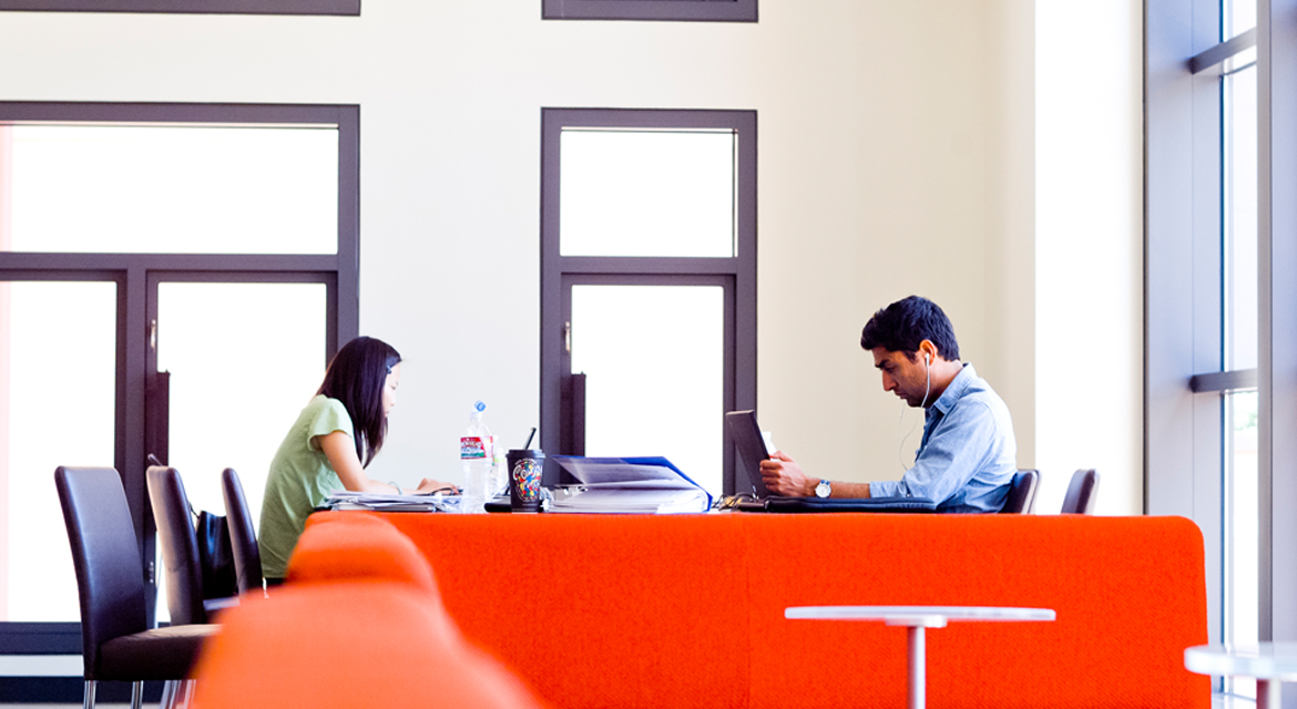 Two students quietly studying in the library