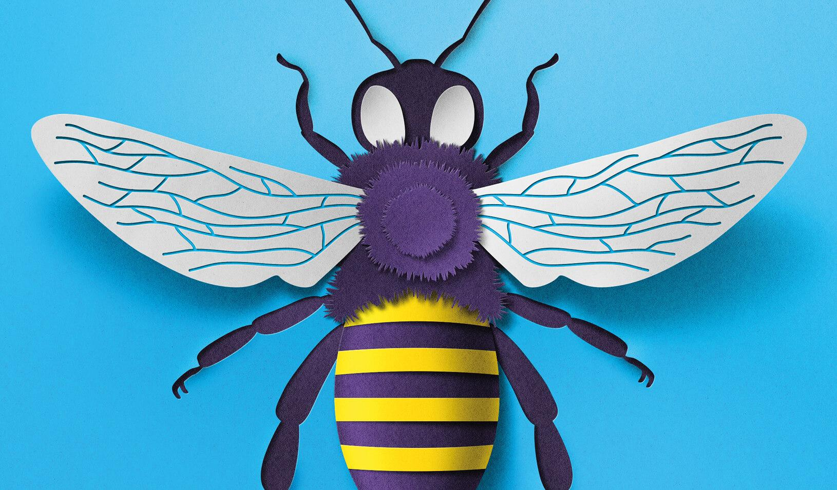 Bumble Bee. Credit: Eiko Ojala