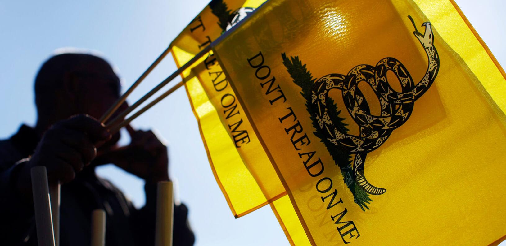 "man holding ""don't tread on me"" flags"