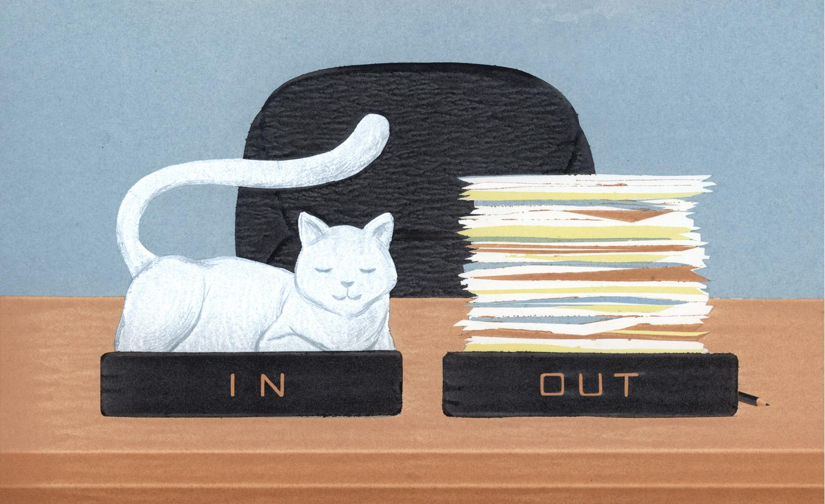 "An ""In"" and ""Out"" box on a desk; a cat sleeps in the ""In"" box and the ""Out"" box is full of paperwork"