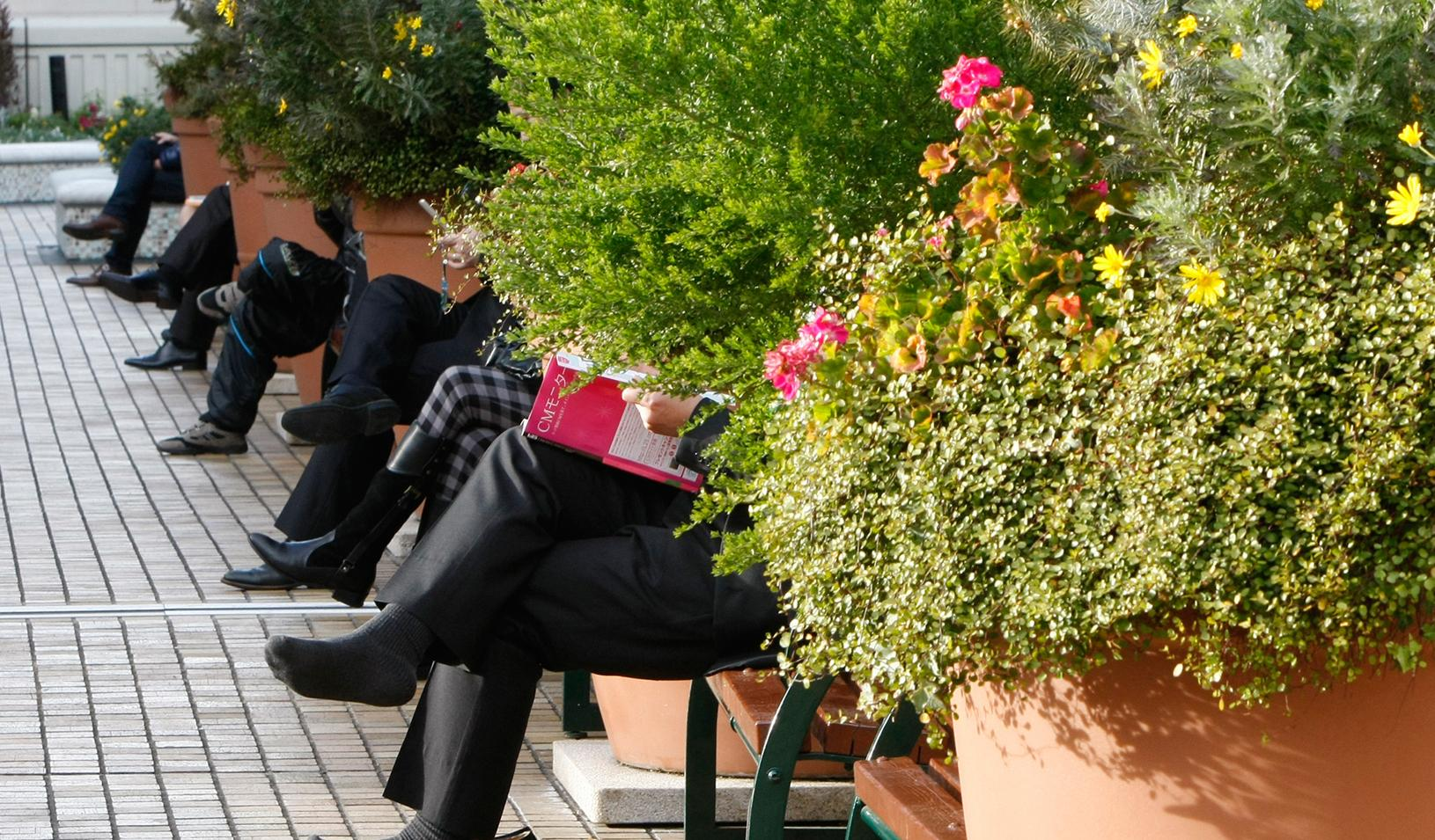 People sitting on benches in between flower pots