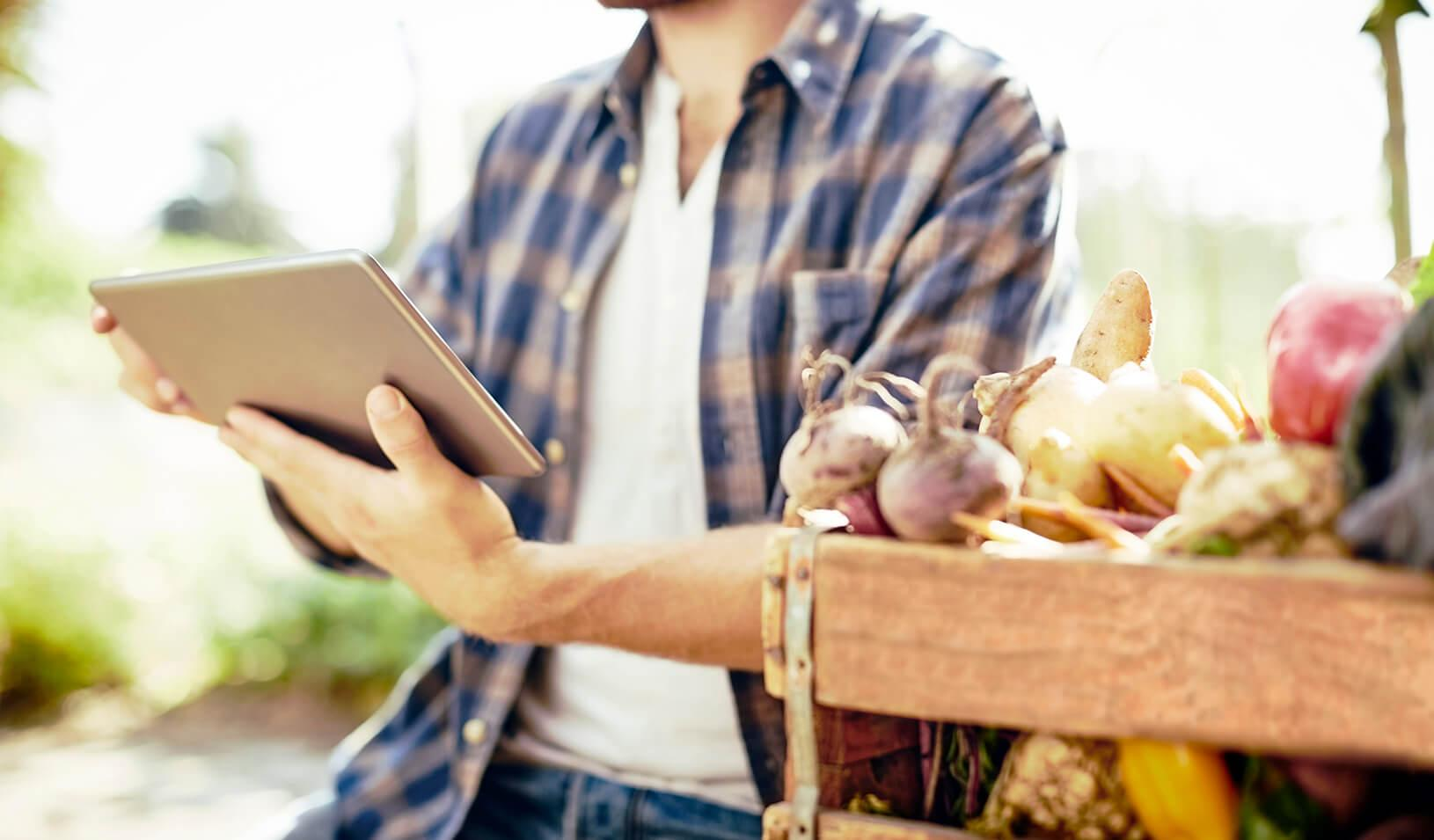 a man looks at an iPad while sitting next to a crate of vegetables