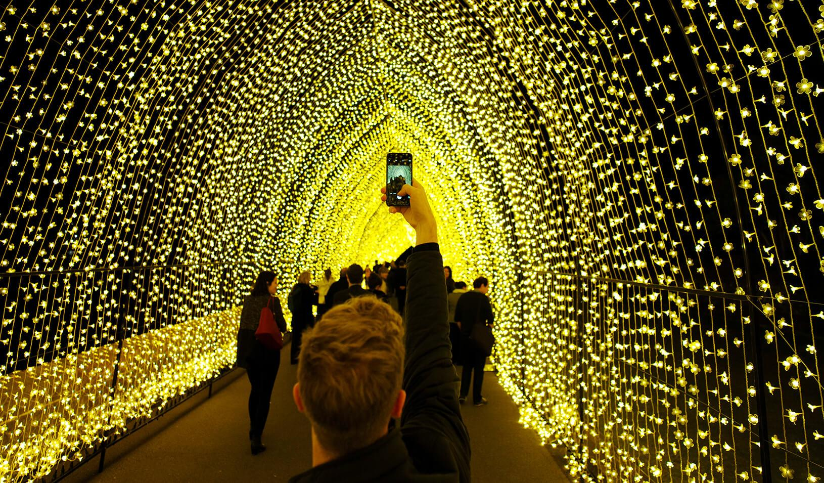 Cathedral of Light' at the Sydney Botanical Garden | Reuters/Jason Reed