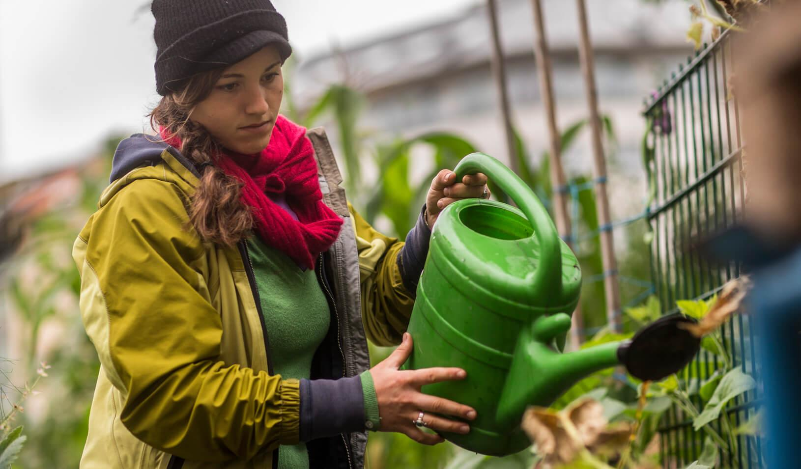Volunteer Lena Haug, a native of Santa Cruz, CA, waters plants at an urban gardening project. Credit: Reuters/Thomas Peter