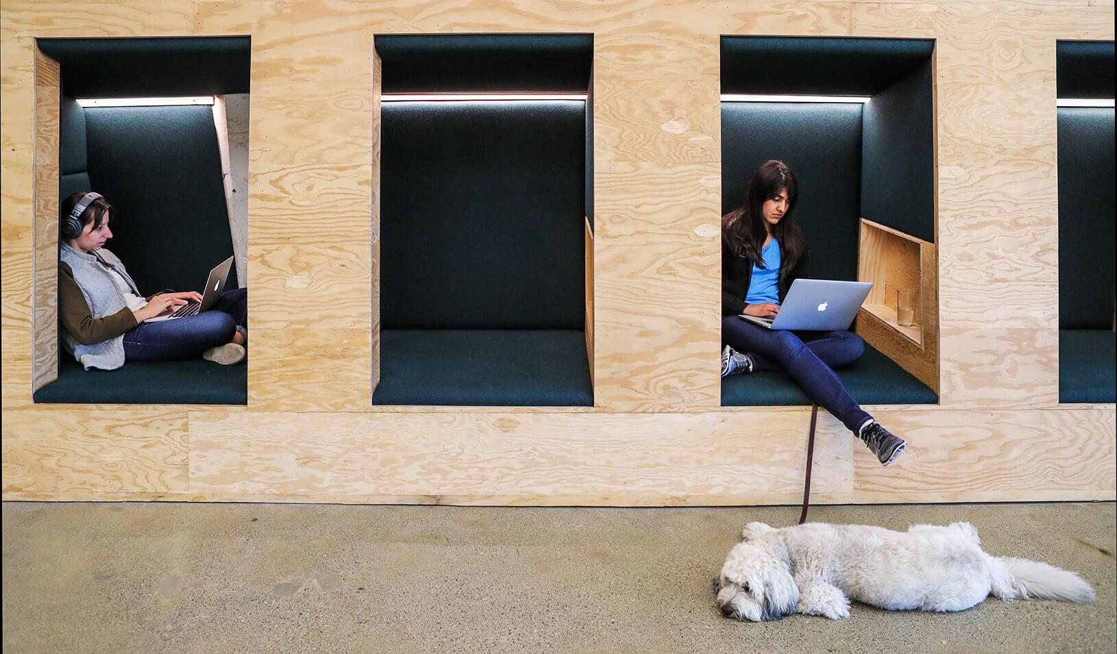 People work in cubes with their Apple computers at the Airbnb office headquarters in the SOMA district of San Francisco, CA. | Reuters/Gabrielle Lurie