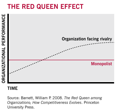 The red queen effect